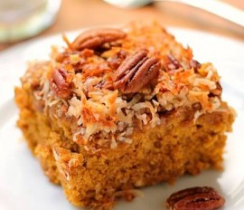 Coconut Oat Coffee Cake